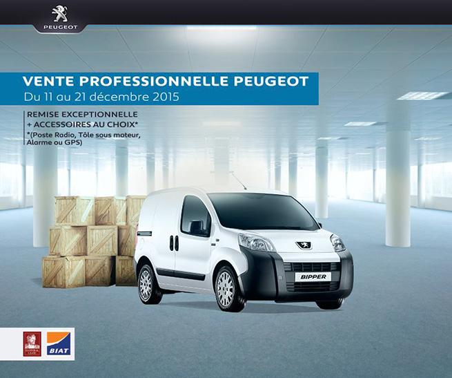 Vente professionnelle Peugeot Bipper Tunisie